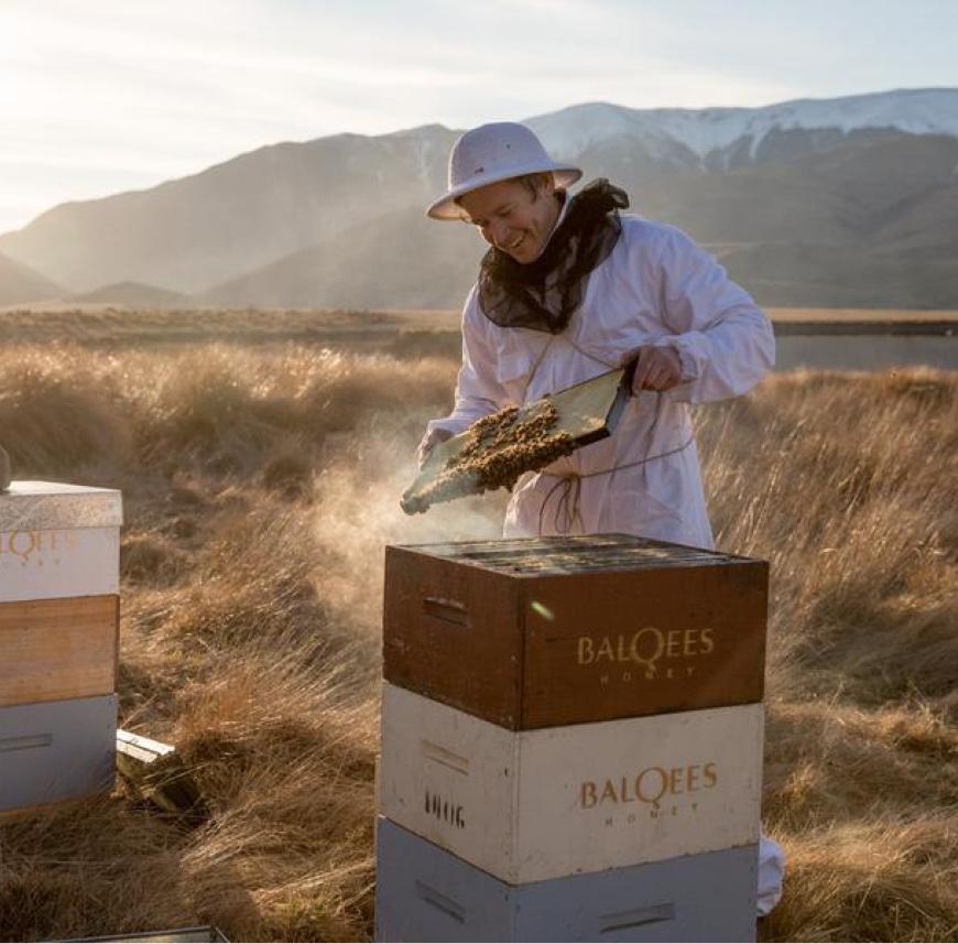 CANTERBURY HIGH COUNTRY HELISKI - Balquees Honey